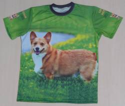 corgi dog puppy pembroke welsh cardigan shirt