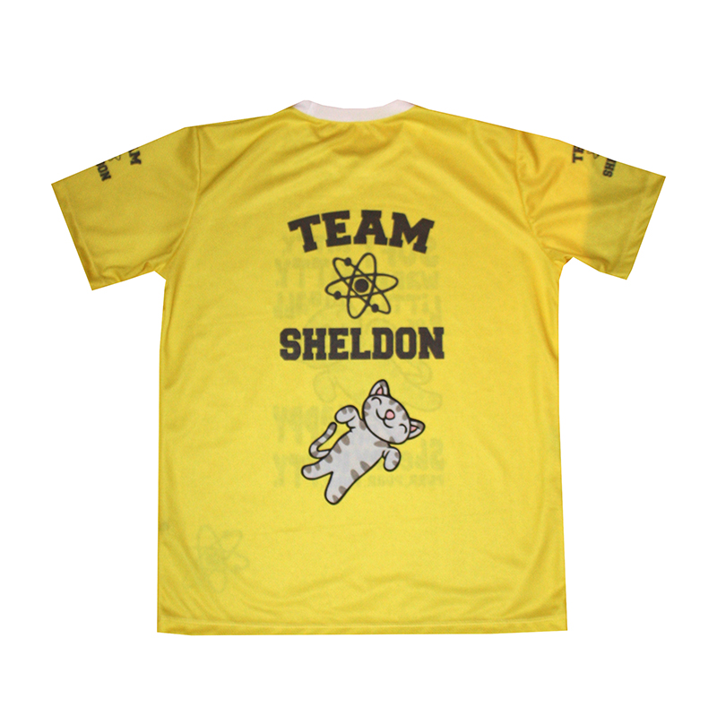Big Bang Theory t-shirt with logo and all-over printed picture - T-shirts with all kind of auto ...